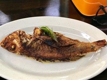 Fish (Ikan)